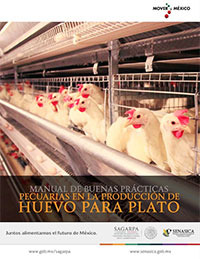 Manual de Buenas prácticas pecuarias en unidades de producción de pollo de engorda