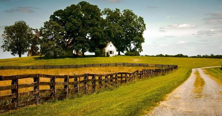Reglamento de la ley federal de desarrollo rural sustentable